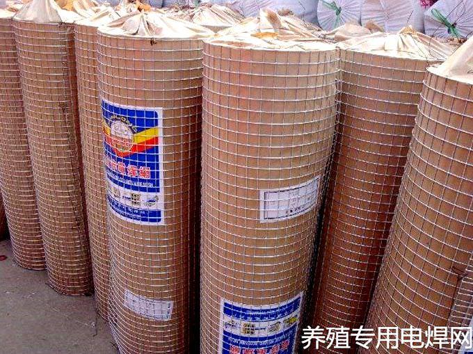 养殖专业电焊网